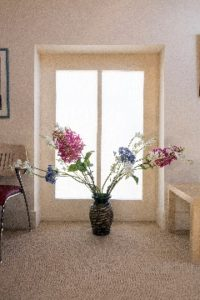 Flowers in window - Cropped